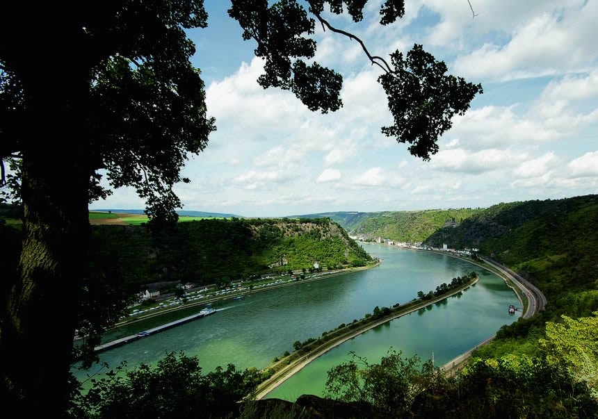 Rhin Roca Loreley